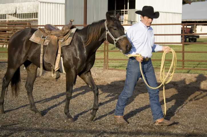 Equestrian Employment As Horse Trainer